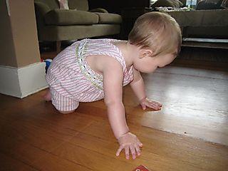 Crawling2